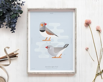 Bird illustration, Zebra Finch, Australia bird print, Finches, Educational poster, Geometric minimal, Nature lover gift, Natural history art