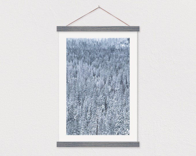 Frosty Forest Canvas with Wood Magnetic Hanging Frame