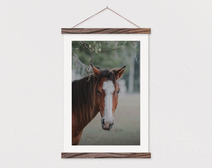 Horse Face Art Print - Include Hanging Canvas Frame
