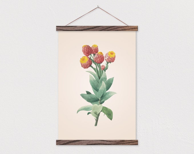 Vintage Botanical Protea Canvas with Wood Magnetic Scroll Frame