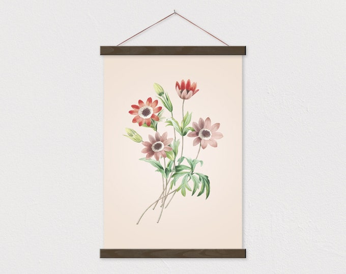 Vintage Botanical Red Anemone Canvas with Wood Magnetic Poster Frame