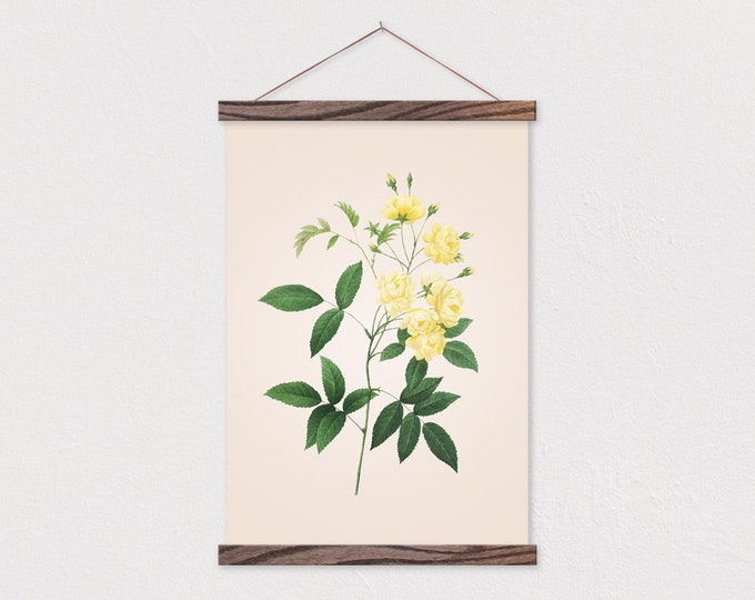 White Wildflower Vintage Botanical Drawing Canvas Print with Wood Magnetic Frame Rails
