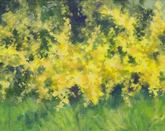 """Forsythia - original painting, yellow floral, green landscape, spring flowers, impressionist, unframed nature wall art, 6x8"""" canvas board"""