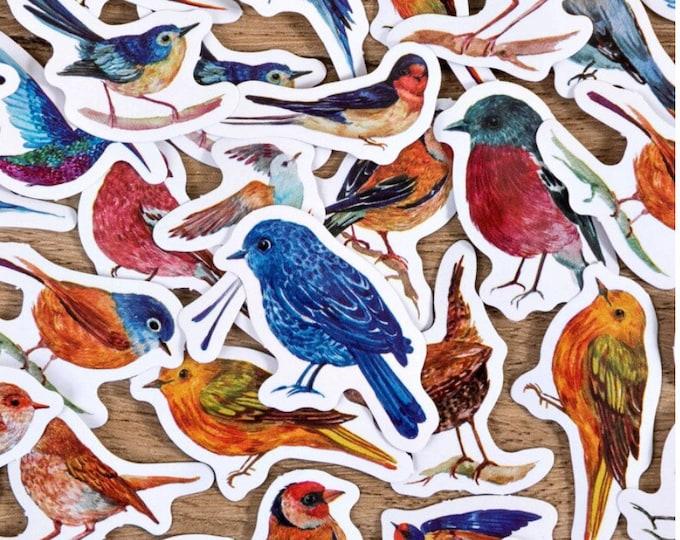 Vogels stickers, 46 stuks