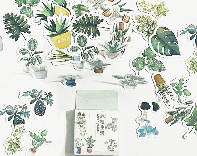 Kamerplanten stickers