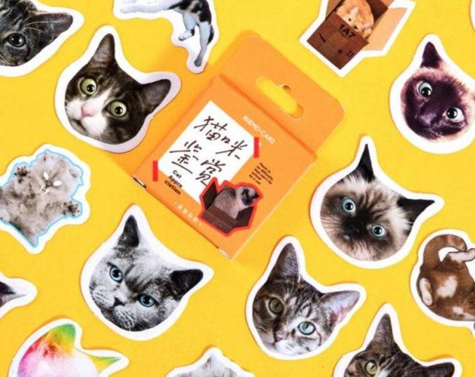 Grappige katten stickers