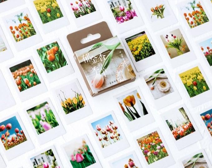 Tulpen stickers, 45 stuks
