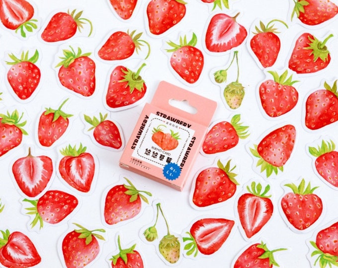 Aardbei stickers, fruit stickers, aardbeien stickertjes, journal notebook scrapbooking stickers. 45 stuks zomer stickers