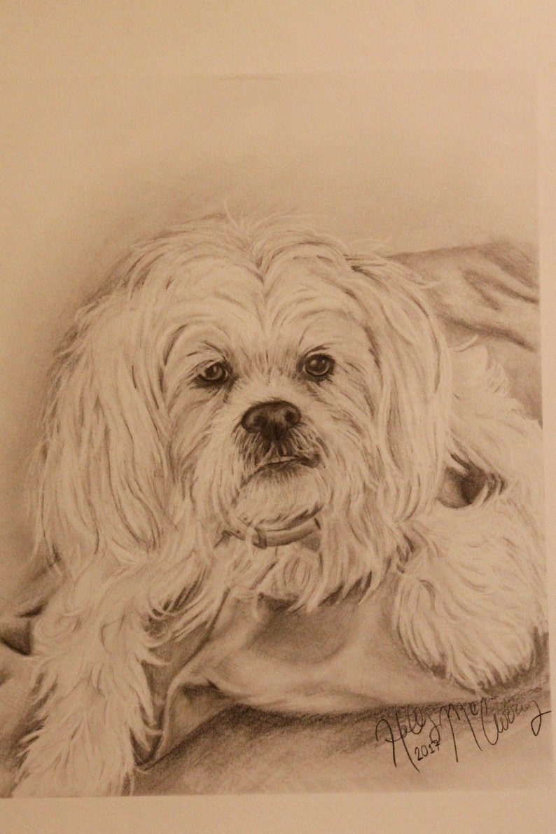 Pencil drawing and more Personalized gifts. Custom hand drawn portraits from photos of people pets