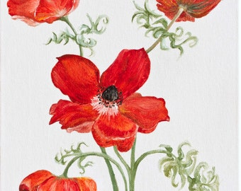 Red Poppies. Original Painting