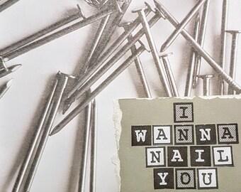 I Wanna Nail You