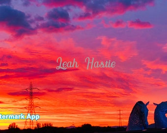 Digital download. Kelpie sunse 4