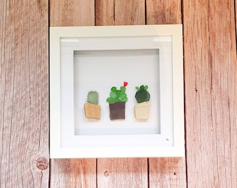 Trio of Cacti, Cactus Lover, Cactus Addict, Indoor Plants, Red Seaglass, Flowers, Fun Gift Idea, Occasions, Mothers Day