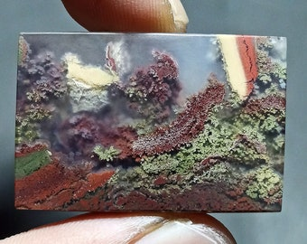 32ct Natural Green Brown Red GARDEN Moss agate ~Stunning Landscape Picture~
