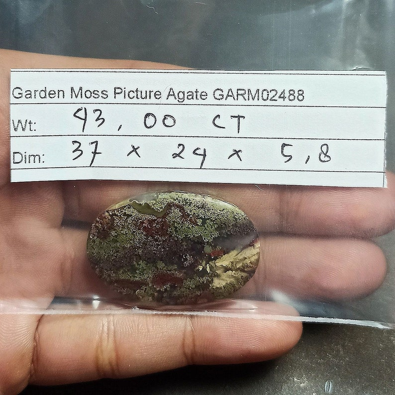 43ct Natural Green Brown Red GARDEN Moss agate ~3 Dimensional Picture~