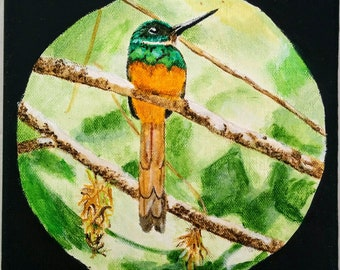 Rufous-tailed Jacamar painting 8x8in