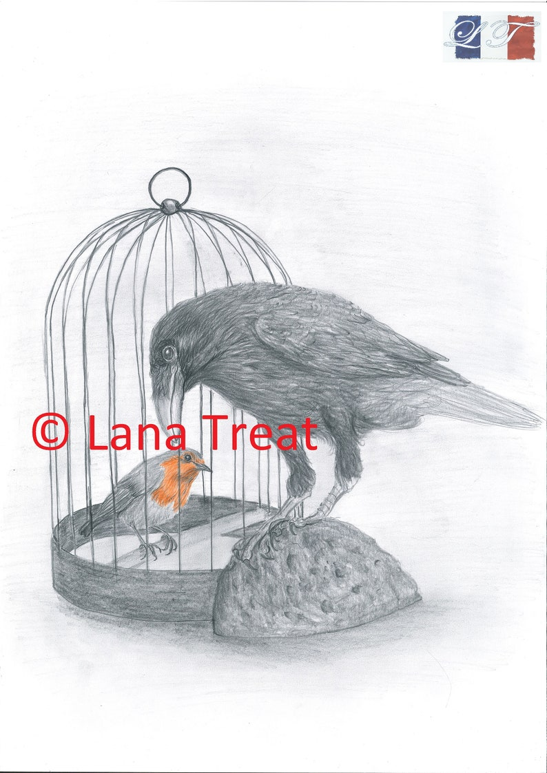 The Raven and The Robin Limited Edition Framed A3 Print image 0