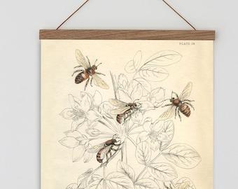 Bee Print Etsy