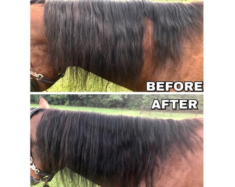 More Colours Mane Hair Extensions For Horses
