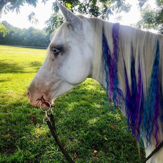 Unicorn Mane Hair Extensions For Horses Perfect For Parties Etsy
