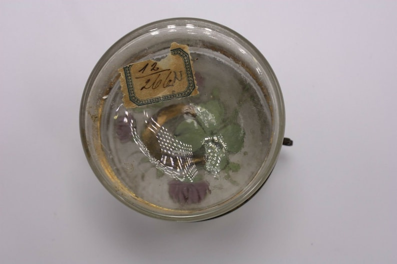 1 Lucky Four Leaf Clover Gilt Horseshoe Antique Vintage Small Round Victorian Glass Jewelry Casket Trinket Ring Box Jar