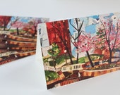 UMass Amherst Note Cards - 8-Count