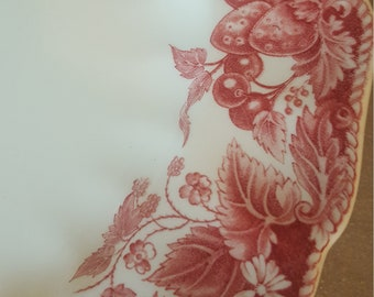 """Set of two vintage dinner plates """"Strawberry Fair"""" pattern by Johnson Brothers"""