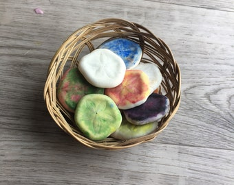 Colorful sand dollars