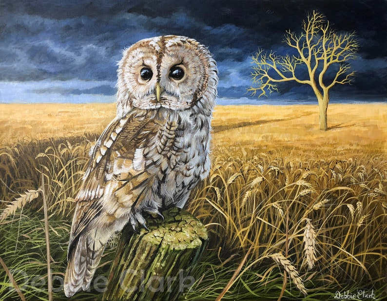 Owl Art Print on A2  Signed Limited Edition  Title: The image 0