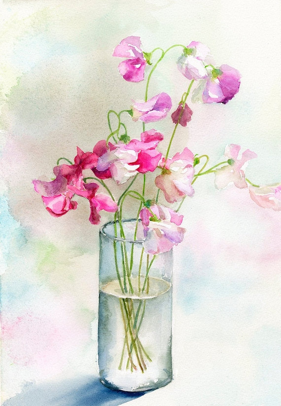 Sweet Pea Flower Watercolour Painting Print Flower Art Print Etsy