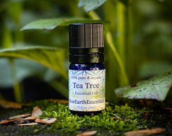 Tea Tree essential oil - 100% pure and organic - undiluted - GC/MS tested
