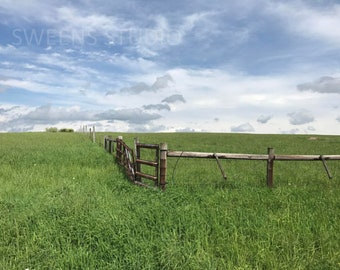 Farm and Field Fencing