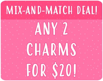 Mix-and-Match Acrylic Charm Deal