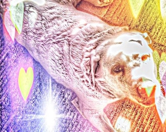 love pup digital picture art drawing of yellow labrador retriever dog