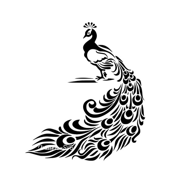 Beautiful Peacock Peacock Svg Intricate Design Svg Clipart