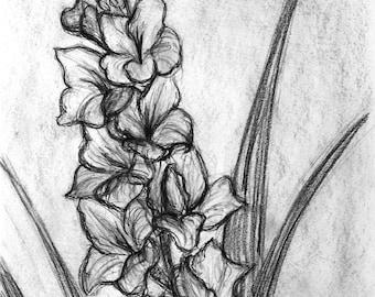 Backyard Flower Sketch - Charcoal Drawing Print