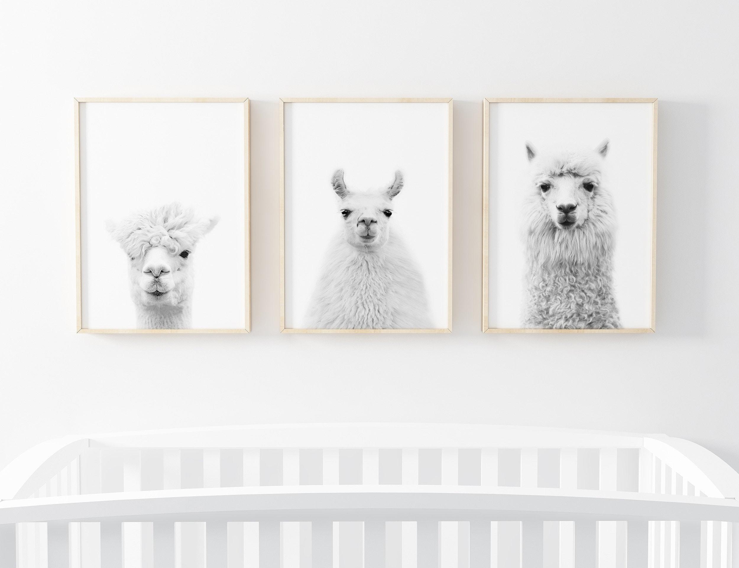different sizes brown farm animal prints nursery decor Llama printable poster photography kids room home decor wall art gift digital