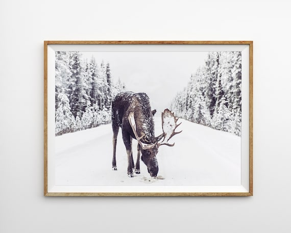 Moose in Snow Print Winter Wall Art Prints Christmas Decor Farmhouse Print Rustic Christmas Printable Art Instant Download Large Poster