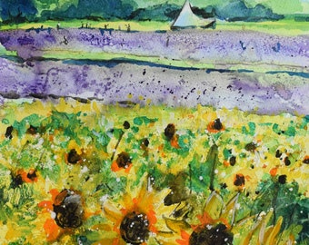 Hitchin Sunflowers