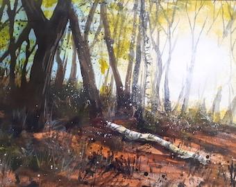 Mardley Woods Dappled acrylic painting