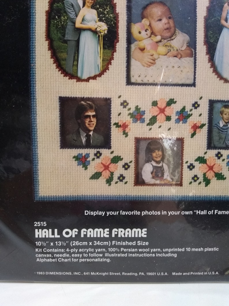Grandmas Hall of Fame Plastic Canvas Family Frame Craft Kit by Dimensions