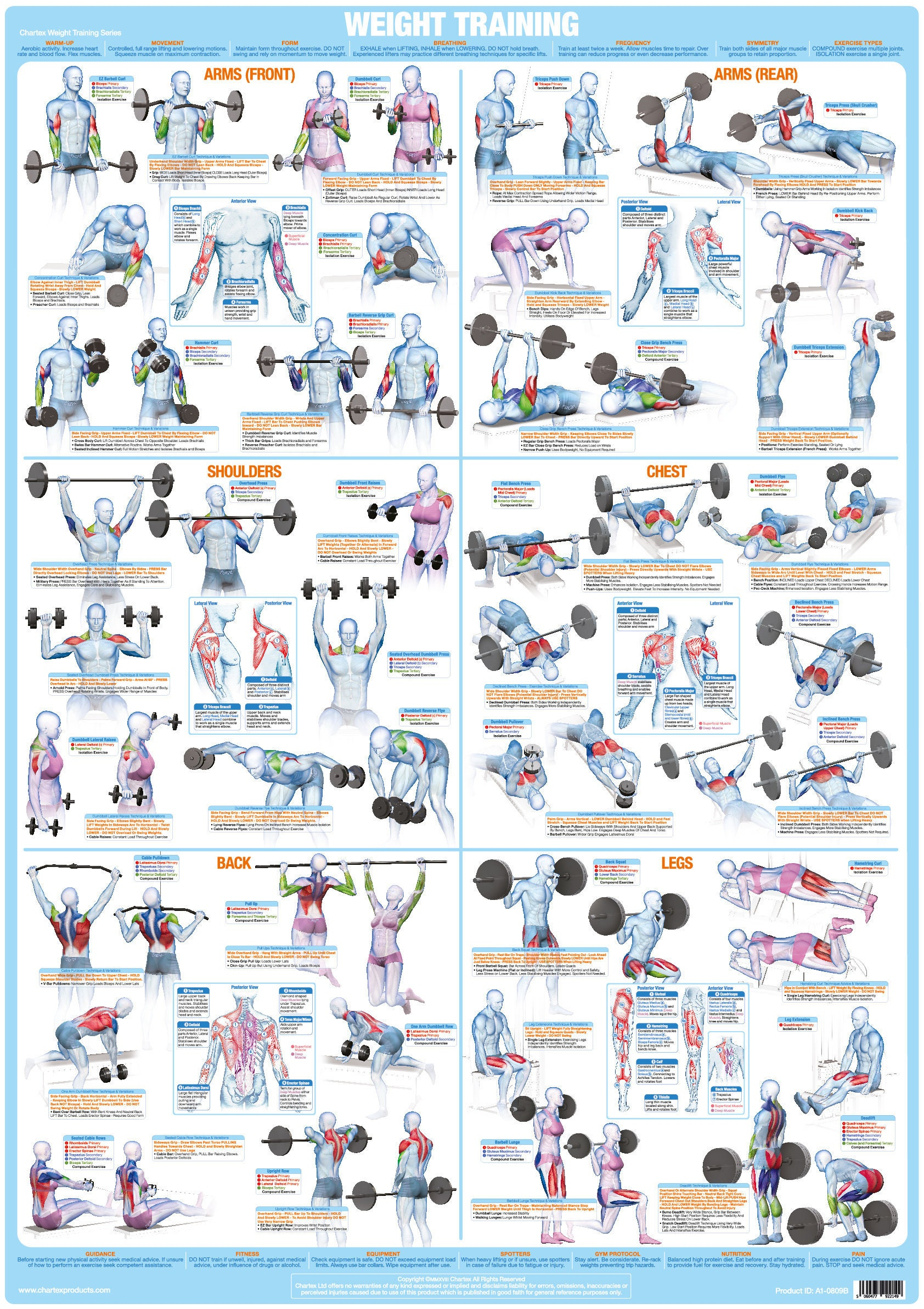 Weight Training and Bodybuilding Exercise Chart