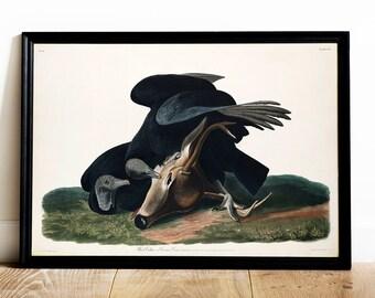 Crow art print | Etsy
