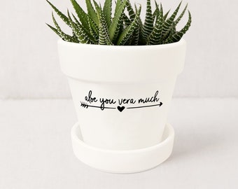 polka dot pot long distance gift plant pot indoor herb planter Aloe there garden gifts indoor herb pots cute planters