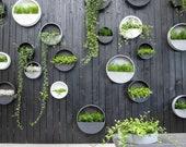Minimalist Hanging Wall Planter, Hanging Planter, Indoor Outdoor Hanging Plant Pot