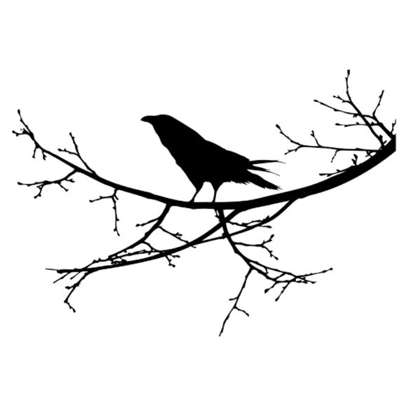 36 Wide x 25 Tall Raven on a Branch Wall Decal
