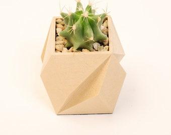 Geometric planter for cactus wood finish