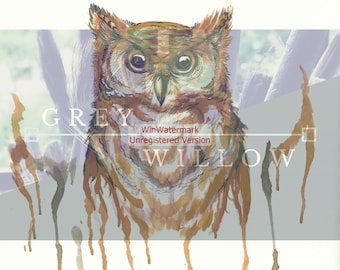 Watercolor Piercing Owl