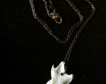 Squirrel jaw necklace