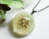 Dandelion necklace, Real dandelion jewelry, Fairy Necklace, Make a wish, Dandelion seeds, Wish necklace, Terrarium jewelry, Gift for women